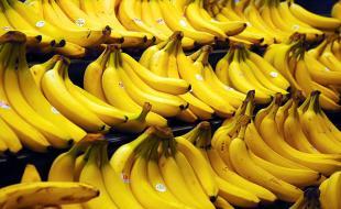 Bananas. Photo courtesy Steve Hopson, www.stevehopson.com.